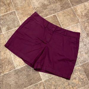 Loft women's size 6 purple shorts